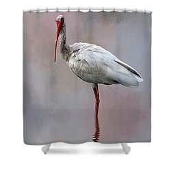 You Lookin' At Me? Shower Curtain by Cyndy Doty