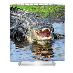 You May Think I'm Smiling Shower Curtain