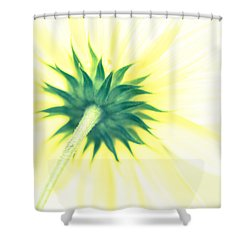 Shower Curtain featuring the photograph You Were Gonna Set The World On Fire by Wade Brooks