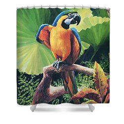 You Got To Be Kidding Shower Curtain by Laurie Hein