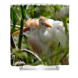Young Couple Shower Curtain by Christopher Holmes