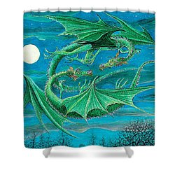 Young Dragons Frisk Shower Curtain