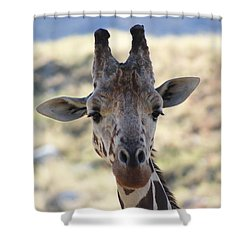 Young Giraffe Closeup Shower Curtain by Colleen Cornelius