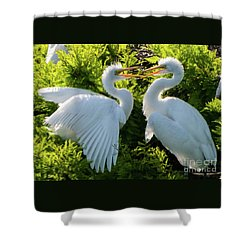 Young Great Egrets Playing Shower Curtain