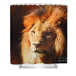 Young King Shower Curtain