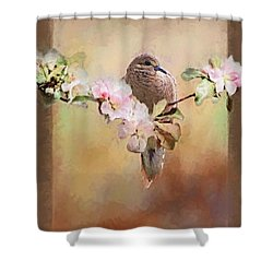 Young Morning Dove Shower Curtain