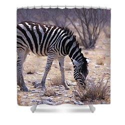 Shower Curtain featuring the digital art Young Plains Zebra by Ernie Echols
