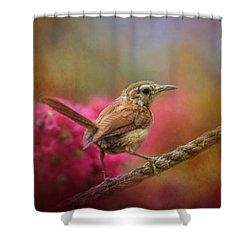 Young Wren In The Garden Shower Curtain
