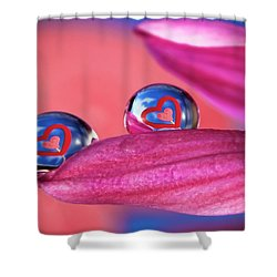 Shower Curtain featuring the photograph Your Heart My Heart by William Lee