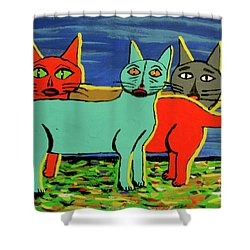 Your How Old  Shower Curtain