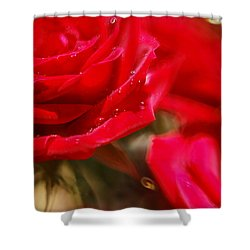 Your Love Spins Me 'round Shower Curtain