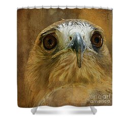 Your Majesty Shower Curtain by Lois Bryan
