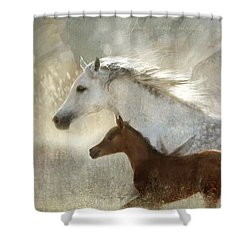 Shower Curtain featuring the digital art Your Wings Exist  by Dorota Kudyba