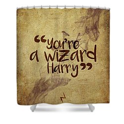 You're A Wizard Harry Shower Curtain