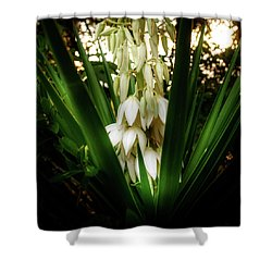 Yucca In The Woods Shower Curtain