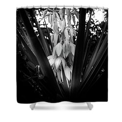 Yucca In The Woods In Black And White Shower Curtain