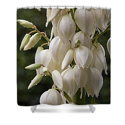 Yucca Plant In Bloom Shower Curtain by Kevin McCarthy