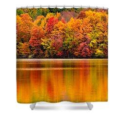 Yummy Autumn Colors Shower Curtain