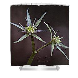 Yvette Shower Curtain