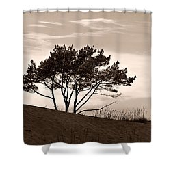 Shower Curtain featuring the photograph Yyteri Evening by Jouko Lehto