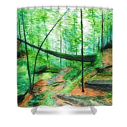 Zaleski Shower Curtain