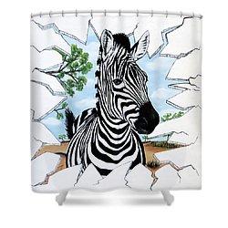 Zany Zebra Shower Curtain