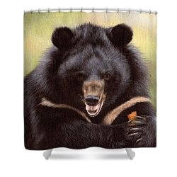 Zebedee Moon Bear - In Support Of Animals Asia Shower Curtain by Rachel Stribbling