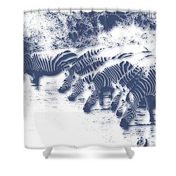 Zebra 3 Shower Curtain