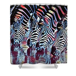 Zebra Dazzle Shower Curtain