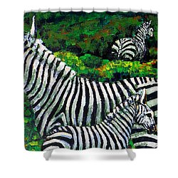 Zebra Family Shower Curtain