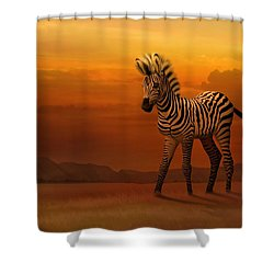 Zebra Fawn  Shower Curtain