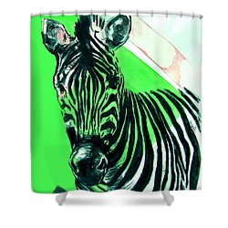 Zebra In Green Shower Curtain