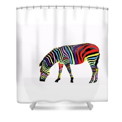 Zebra In My Dreams Shower Curtain by Bonnie Barry