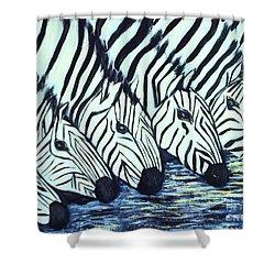 Zebra Line Shower Curtain by Donna Dixon
