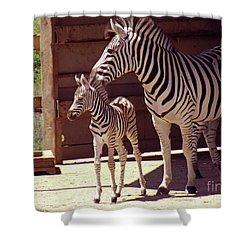 Zebra Mom And Baby Shower Curtain