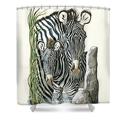 Zebra Mother And Colt Protect Our Children Painting Shower Curtain