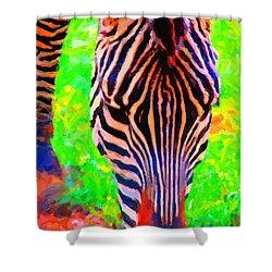 Zebra . Photoart Shower Curtain