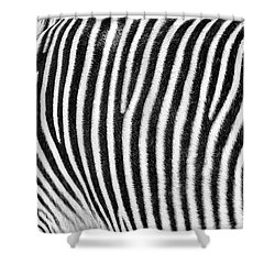 Zebra Print Black And White Horizontal Crop Shower Curtain