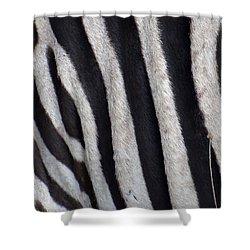 Zebra Skin Closeup Shower Curtain