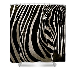Zebra Up Close Shower Curtain