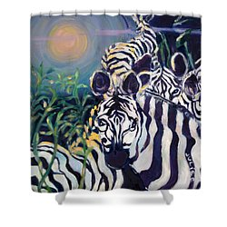 Zebras On The Savanna Shower Curtain by Julie Todd-Cundiff