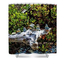 Zen Shower Curtain by Alana Thrower