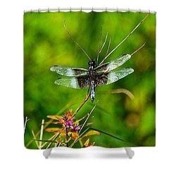 Zen Dragonfly 2 Shower Curtain