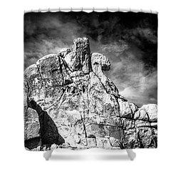 Zen Rocks II Bw Shower Curtain
