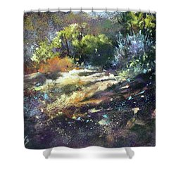 Zig Zag Path Shower Curtain by Rae Andrews