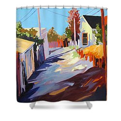 Shower Curtain featuring the painting Zig Zag Shadows by Rae Andrews