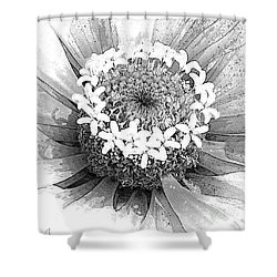 Shower Curtain featuring the photograph Zinnia, Black And White by Jeanette French