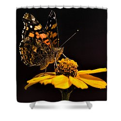 Zinnia Sipping Shower Curtain by Alana Thrower