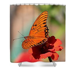 Zinnia With Butterfly 2669 Shower Curtain