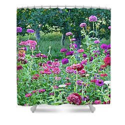 Zinnias Shower Curtain